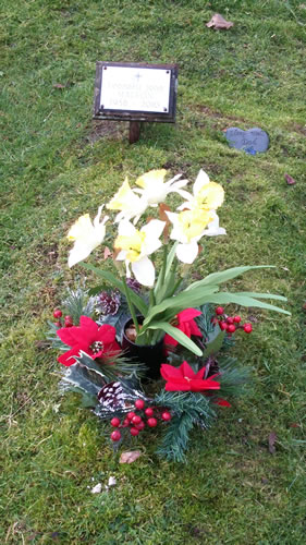 Visit dad's grave with some fresh flowers and a Christmas Wreath.